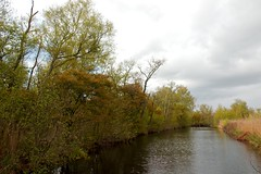 Lusthof De Haeck (F.d.W.) Tags: landscape landschap lusthofdehaeck nature natuur natuurmonumenten swamp tree utrecht water wetlands fdw fransdewit corel aftershot corelaftershot canon canon7d mk2 mkii canon7dmk2 canon7dmkii canoneos7d canoneos7dmkii canoneos7dmk2 eos7d eos7dmkii eos7dmk2 wwwflickrcomphotosfransdewit polder dutch netherlands nederland holland europe europa eec eeg