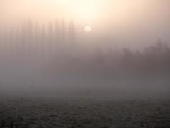 River Lea, Hertfordshire-1020861 (chrisyatesuk) Tags: hertford kingsmead riverlea autumn earlymorningsun hertfordshire landscape monochrome towpath