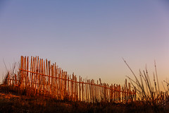 The Sandbreak (La Marina, Spain 2010) (Alex Stoen) Tags: 5dmk2 alexstoen alexstoenphotography beach canon canoneos5dmarkii ef70200f28lisusm erosion fence lamarina playa cane caña madera