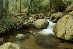 Riera de Riells (Hachimaki123) Tags: paisaje parcnaturaldelmontseny landscape montseny cascada water waterfall agua río rio river riera rieraderiells