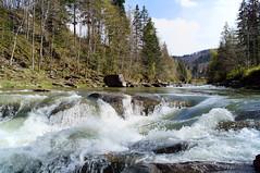 DSC09353Водопад1 (igor_shumega) Tags: природа пейзаж весна вода водопад река лес
