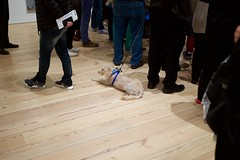 Service Dog (ian.crowther) Tags: whitney whitneymuseum museum art servicedog dog biennial tourgroup