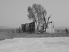 The trees by the destroyed building (Nikos Karatolos) Tags: kalochori thessaloniki delta axiou greece mussel houses abandoned samyang 50mm f12