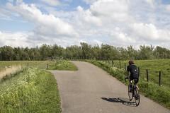 Bicycle (Dimormar!) Tags: natuur nature fietser wielrenner schaduw hoogvliet poortugaal grens lente voorjaar springtime