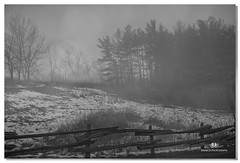 JANUARY 2017-020290-222 (Nick and Karen Munroe) Tags: forest fog foggy tree trees firtrees mist misty heartlakeconservationarea heartlake conservationareas beauty brampton beautiful brilliant blackandwhite bw blackwhite bandw munroedesignsphotography munroedesigns munroephotography munroe monochrome mono nikon nickmunroe nickandkarenmunroe nature nickandkaren nikond750 karenick23 karenick karenandnickmunroe karenmunroe karenandnick ontario outdoors canada snow weatherevent winter woods hike fence fenceline 24 nikon2470f28
