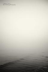 Disguised (rhfo2o - rick hathaway photography) Tags: rhfo2o canoneos7d canon elmer elmersands bognor bognorregis westsussex beach sea seaside waves fog mist minimal bw blackandwhite