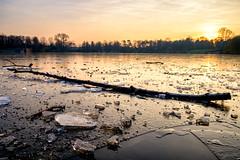 Sonnenuntergang am Stadtparksee (REAL PLUS) Tags: stadtpark see eis sonnenuntergang sonnenschein frost winter wasser stadt stadtlandschaft landschaft hamburg fujifilm xt10