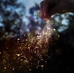 bone dry (marianna_a.) Tags: p1230263 bone dry sand backlit glitter sprinkles hand wind bokeh macro outdoors mariannaarmata f64 f64g82m