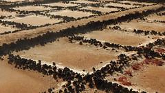 Salinas de Janubio (offroadsound) Tags: salinasdejanubio salinas lanzarote canarias islascanarias heat salt water dry driedout ressources naturalressources