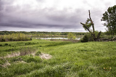 Springtime at Heron Lake (SteveFrazierPhotography.com) Tags: evening stormy rain overcast clouds trees water reflections shore shoreline highway136 illinois il usa unitedstates america stevefrazierphotography nature landscape outdoor sky field beautiful may