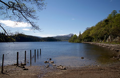 Loch Ard (Doug_Cook) Tags: lochard trossachs loch water sky warm spring trees aberfoyle