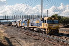 6WM2 Albury (jaymcghee10) Tags: pacific national pn steelie 6wm2 steel train nr98 nr99 an7 an4 albury wodonga melbourne hastings victoria bluescope canon eos 70d