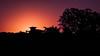 Magenta Sunset (gabrielpaparotti) Tags: sunset magenta orange silhouete silhueta laranja por do sol