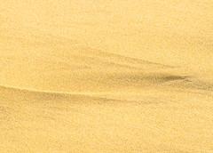 WindKiss.jpg (Klaus Ressmann) Tags: klaus ressmann omd em1 olympus system abstract autumn beach foleron sand design flcabsnat minimal shadows klausressmann omdem1 olympusomdsystem