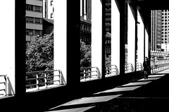 On the pieces of light (pascalcolin1) Tags: paris bercy femme woman ombre shadow lumière light chemin way photoderue streetview urbanarte noiretblanc blackandwhite photopascalcolin
