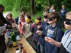 Waldjugendspiele2017-021
