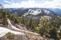 Hills and hills (johnwporter) Tags: hiking scramble cascades northcascasdes mountains nationalforest wenatcheenationalforest wenatcheemountains roughhousemountain 徒步 爬行 喀斯喀特山脈 北喀斯喀特山脈 山 國家森林 韋納奇國家森林 韋納奇山脈 毆鬥山 atx116prodx tokinaaf1116mmf28 wideangle wideanglelens 廣角 廣角鏡