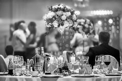 """""""Dance me to the wedding now, dance me on and on..."""" (Paweł Szczepański) Tags: olszewnicanowa mazowieckie poland pl shockofthenew pinnaclephotography exoticimage tistheseason trolled legacy sonyflickraward extraordinarilyimpressive ruby3 ruby10 sal70200g"""