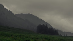 Fog Lines (Netsrak) Tags: alpen alps berg berge kleinwalsertal nebel fog mist mountain mountains riezlern vorarlberg österreich at