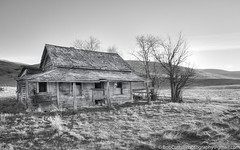 The Shack (westrock-bob) Tags: shack old sentimental cuthill aged greyscale canon6d homestead plains trees bw copyright alberta weathered grassland canada history rural dream prairie