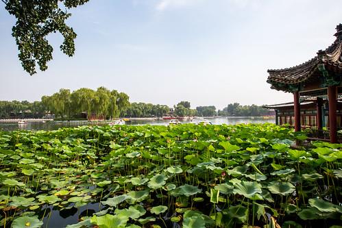 Peking_BasvanOort-83