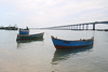 Pamban Bridge, Rameswaram (RossCunningham183) Tags: pambanbridge rameswaram india southindia tamilnadu fisherman boats birds depthoffield