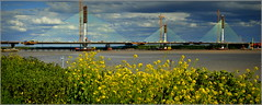 Mersey Gateway Project 14th May 2017 (Cassini2008) Tags: merseygatewayproject cablestayedroadbridge runcorn widnes rivermersey bridgeconstruction bridge