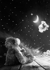 Wish upon a star (GingerboarPhotography) Tags: bear teddy stuffy toy wishing stargazing moongazing monochromeyearningwhistful