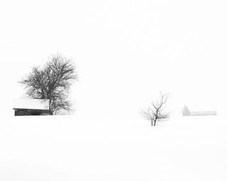 Journée neigeuse et venteuse