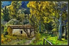Casetta nel bosco - Maggio-2017 (agostinodascoli) Tags: art digitalart impressionismo photoshop photopainting nikon nikkor bosco landscape paesaggi alberi colore fullcolor agostinodascoli cianciana sicilia piante creative