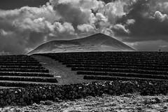 Lanzarote vineyards I (Piotr_PopUp) Tags: lanzarote vineyards volcano volcan landscape cloud clouds cloudy blackandwhite canarias canaryislands blackwhite bw monochrome mono