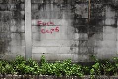 Law & Order in Bangkok (jcbkk1956) Tags: street wall graffiti profanity cops plants thailand bangkok thonglo nikon d3300 nikkor 35mmf18dx mould stains worldtrekker
