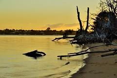 DSC_0079 (4) (RUMTIME) Tags: sunset coochiemudlo coochie redlands queensland brisbane beach