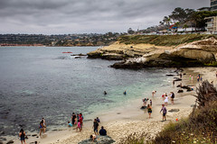 La Jolla Cove: A view that never gets old! (Photos By Clark) Tags: beachshots canon2470 canon60d subjects sandiego california unitedstates la jolla lajolla nik lightroom waves swim seal sealion summer sand water pacific stink colorefx