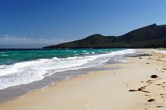 20170414-09-Hazards Beach (Roger T Wong) Tags: 2017 australia freycinet freycinetnationalpark hazardsbeach np nationalpark rogertwong sel2470z sony2470 sonya7ii sonyalpha7ii sonyfe2470mmf4zaosscarlzeissvariotessart sonyilce7m2 tasmania beach bushwalk camp clouds hike ocean outdoors sand sea sky tramp trek walk waves