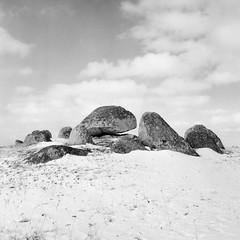 Skegriedösen - Kodak BW400CN (magnus.joensson) Tags: sweden swedish svedala skåne rolleicord v 6x6 tlr 1955 blackandwhite monochrome kodak bw400cn bw 400 cn c41 exp skegrie redfilter
