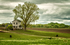 Spring Rains at the Old Farmstead (SteveFrazierPhotography.com) Tags: farm house abandoned old spring sprintime stormy rainy clouds overcast illinois il farming farmland agriculture field plowed rural country countryside scene scenery landscape outdoor evening stevefrazierphotography chili art artwork cloudy storm rain cattle cow roadway dilapidated weathered vintage historic historical yesteryear