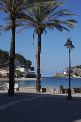 IMGP6079-0-Mallorca-2017-Port de Soller (marohhoram) Tags: 2017 balearen ereignis europa mallorca portdesoller soller spanien urlaub