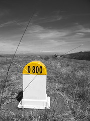 D 800 (Ren-s) Tags: noiretblanc noir noirblanc blanc bw black blackandwhite blackwhite auvergne puydedôme montagne monochrome mountain clermontferrand nature route road sky ciel d800 borne distancemarker milestone jaune yellow weed grass herbe people personne hikers randonneurs hiking france clouds nuages pointdevue pointofview europe plateaudegergovie