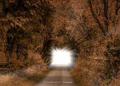 Heaven´s Gate / Himmelstor (mr.wohl) Tags: heaven gate himmelstor weg himmel himmeltür licht derweginslicht