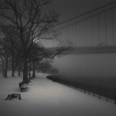 Bay Ridge Promenade II (Vesa Pihanurmi) Tags: newyork newyorkcity nyc brooklyn bayridge longisland park verrazanonarrows bridge promenade blizzard snowstorm winter snow streetphotography street trees
