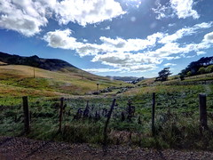 Otago Peninsular (Lim SK) Tags: yi action camera otago peninsular dunedin south island new zealand
