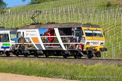 456 093-4 : Sersa (Thomas Naas Photography) Tags: freienbach schweiz switzerland eisenbahn railways zug züge train lokomotive outdoor fahrzeug werbeloks advertising spezialbemalung specialpaint sob südostbahn re456 sersa