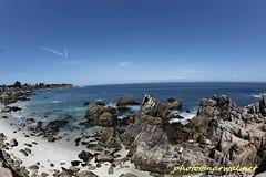 Pacific Grove (Narwal) Tags: pacificgrove california ca usa 美國 加州 太平洋叢林 canon fisheye lens 15mm 魚眼 鏡頭