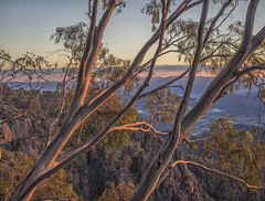 "Mt Buffalo Sunrise 4 • <a style=""font-size:0.8em;"" href=""http://www.flickr.com/photos/78819726@N04/34130091031/"" target=""_blank"">View on Flickr</a>"