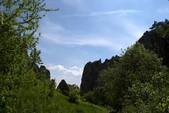 DSC_2610 (oria77) Tags: dolina bolechowicka krakow valley woodland poland