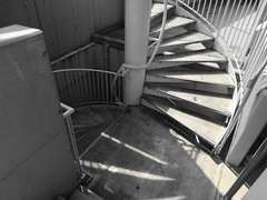 (Human-Faced Bun w/ Honey Pudding) Tags: stair steps winding spiral sunshine shadow black white bnw banister