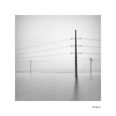Power poles in fog. (local37) Tags: calgary alberta power pole fog highway scenic ditch bw
