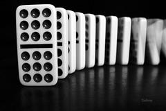 Anxiously Awaiting the Inevitable  - Explored 4-24-17 #27 (SteveFromOhio) Tags: macromonday domino falldown blackandwhite motionblur toys games intentionalblur