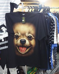 happy dog in the mall (the foreign photographer - ฝรั่งถ่) Tags: happy dog tshirt laksi plaza shopping mall clothes bangkok thailand sony rx100